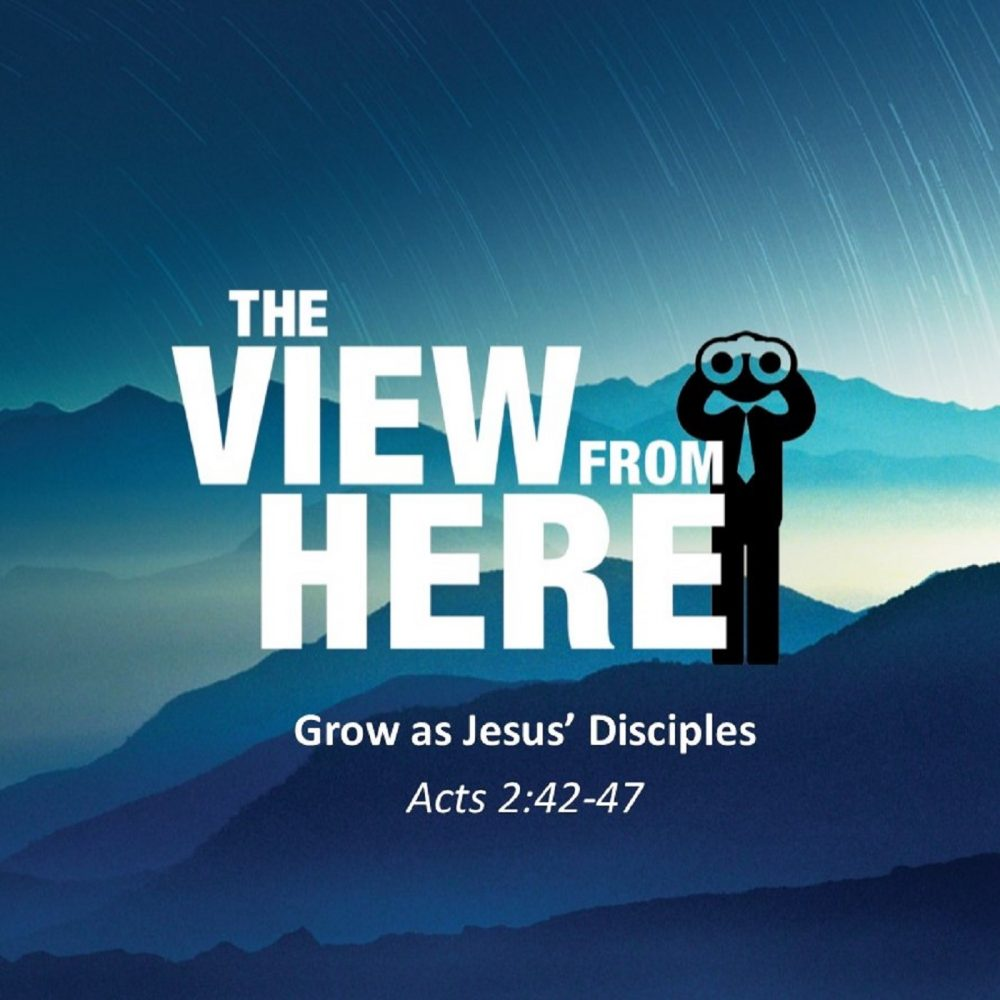 Grow as Jesus' Disciple  Image